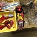 NECA diffuse un photo du prototype du Red Predator