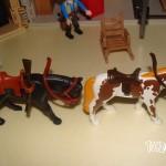 playmobil coffret western 20127