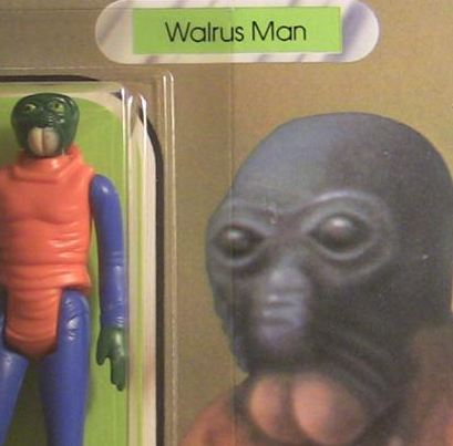 walrusmandetail