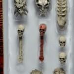 Début des livraisons du pack de Crânes par NECA