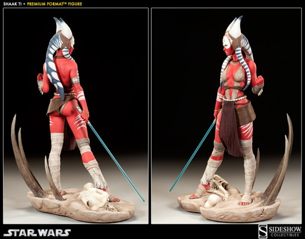 0004-300096-shaak-ti-003