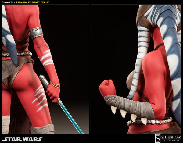 0005-300096-shaak-ti-004