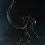 sh monster arts bandia alien avp 1
