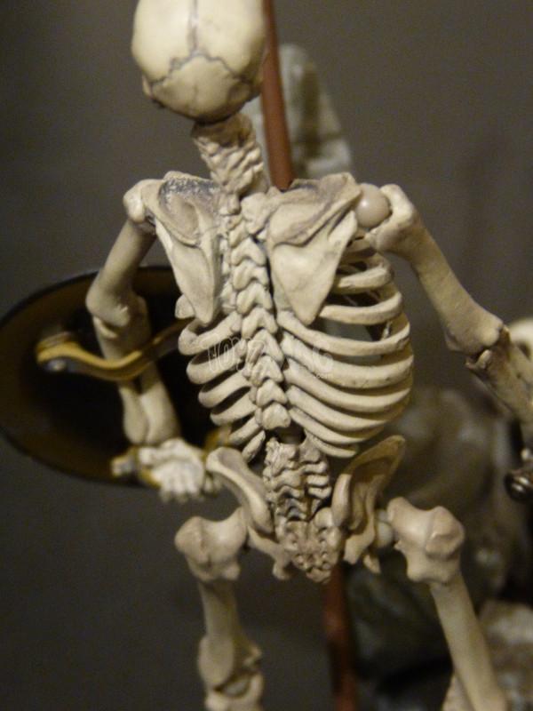 revoltech skeleton jason argonaut review v2 24