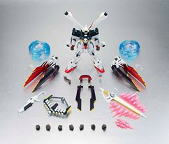 Robot Spirits Crossbone Gundam Full Cloth 1