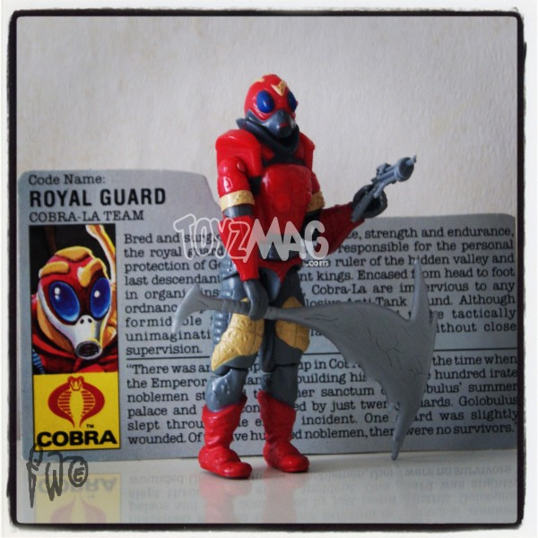 hasbro royal guard