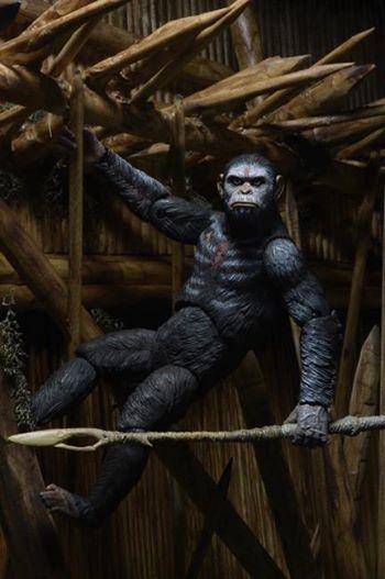 pota #monkeymonday neca
