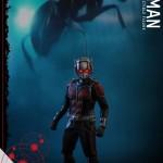 Hot Toys : Ant-Man à l'échelle 12