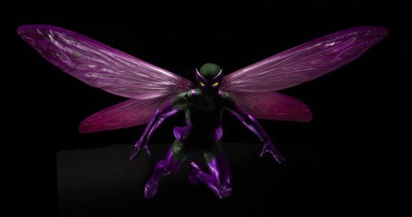 Beetle-1