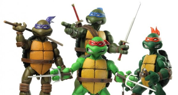 Turtles_Full_Product_cropped_1024x1024