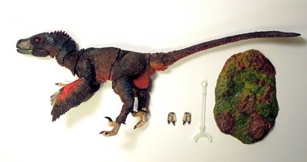 Atrociraptor-marshalli