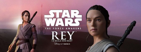 Star Wars Mini Bust Rey par Gentle Giante