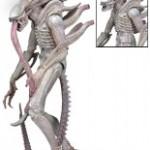 1200x-51614-Albino_Alien--300x200