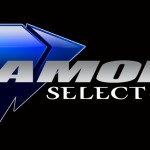 NYTF 2013 : Diamond Select demandez le programme