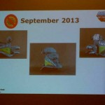 motuc-sdcc2013-panel_17