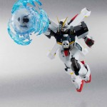 Robot Spirits Crossbone Gundam Full Cloth