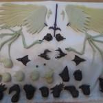 Gothiropolis Ravens : arrivée des Test-shots