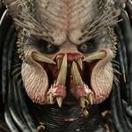 Elder-predator-lsb-004