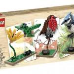 LEGO Ideas : le set Birds dévoilé