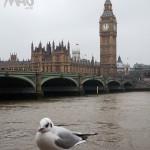 Musée du jouet à Londres : A voir d'urgence !