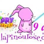 Sponsor : Des Promo exceptionnelles pour fêter les 9ans de LapinouRose !