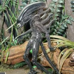 0020-SDCC2015-NECA-Alien-and-Predator-020