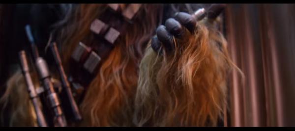 chewie-det