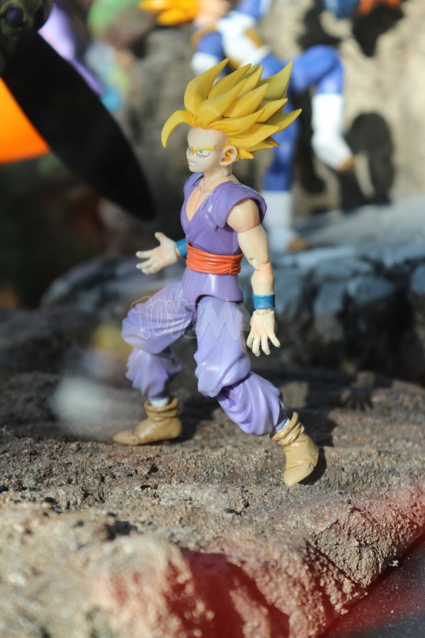 JapanExpo2016 : vitrine Dragon Ball – Stand Tamashii Nations