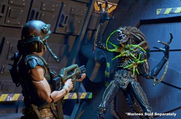 Alien - Series 12 par NECA
